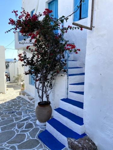 Miasteczko Plaka na wyspie Milos